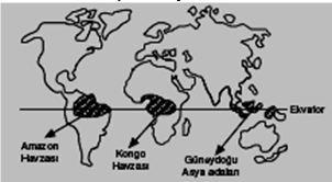 Makro İklim Tipleri