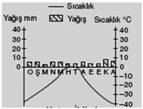 kutup-iklimi-sicaklik-yagis-grafigi