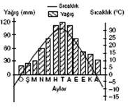 orta-kusak-karasal-iklimi-sicaklik-yagis-grafigi