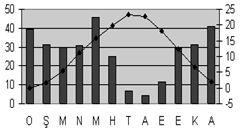 step-iklimi-sicaklik-yagis-grafigi