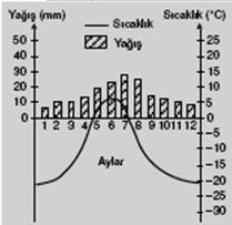 tundra-iklimi-sicaklik-yagis-grafigi