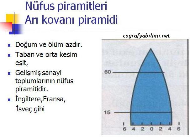 gelişmiş-ülke-nüfus-piramiti