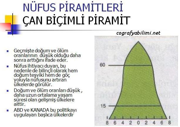 nüfus-arttırıcı-politika-nüfus-piramiti