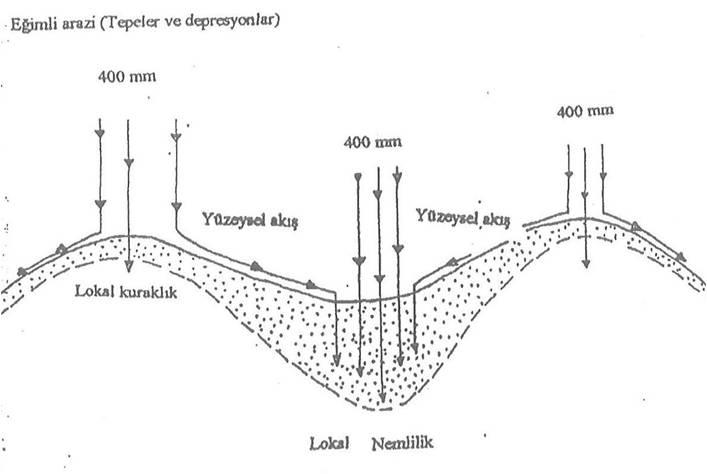 Düz ve Eğimli Arazide Kısa Mesafeler İçinde Toprak Oluşumundaki Rolü; Morfolojik açıdan Toprak Oluşumu 1